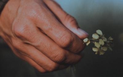 Choosing a Spiritual Path: 5 Things to Keep in Mind