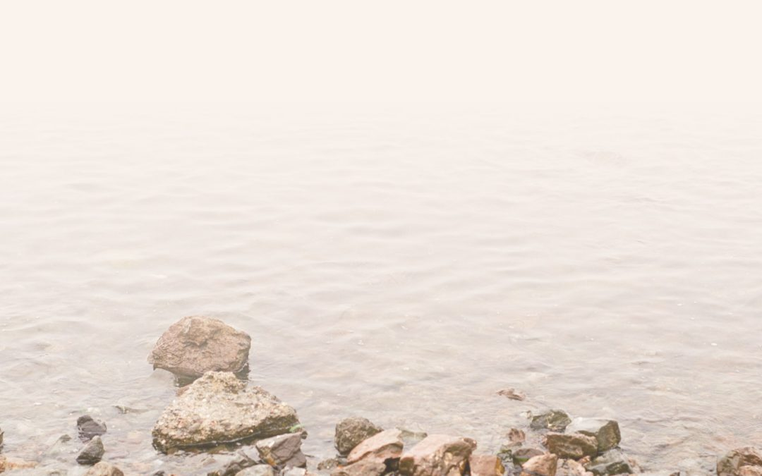 Meet Nanette: Therapist and Psychotherapist